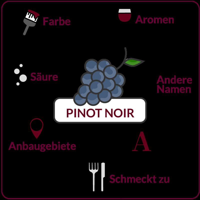 Farbe, Aromen, Säure, Anbaugebiete Rebsorte Pinot Noir