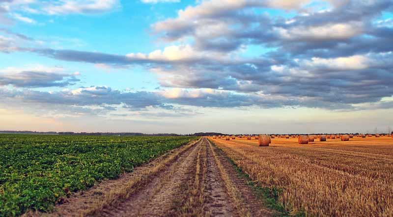 Landschaft mit Feldern und Himmel