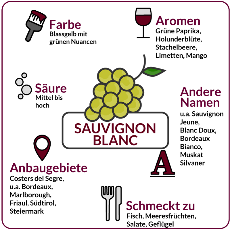 Farbe, Aromen, Säure, Anbaugebiete Rebsorte Sauvignon Blanc