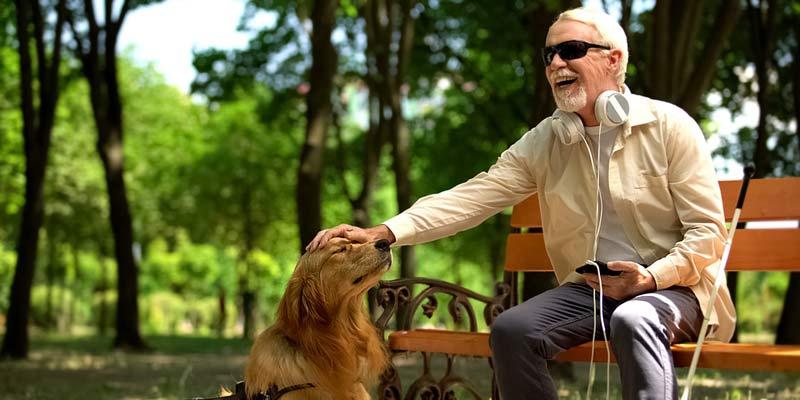 Mann mit Blindenhund im Park