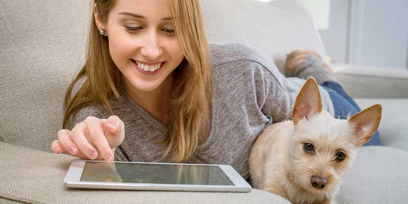 Junge Frau mit Tablet und Hund