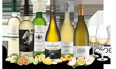Ebrosia Weißwein-Entdeckerpaket