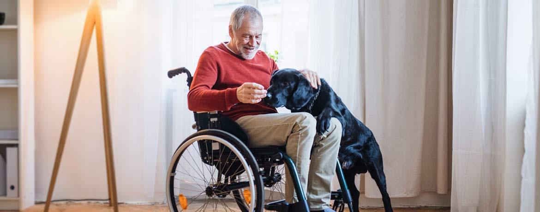 Rollstuhlfahrer mit Hund