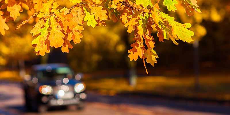 Autoverkehr im Herbst