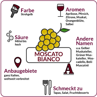 Farbe, Aromen, Säure, Anbaugebiete Rebsorte Moscato Bianco