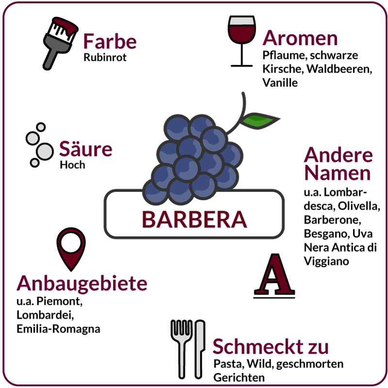 Farbe, Aromen, Säure, Anbaugebiete Rebsorte Barbera