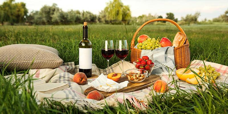 Leckeres Picknick im Grünen mit einer Flasche Rotwein
