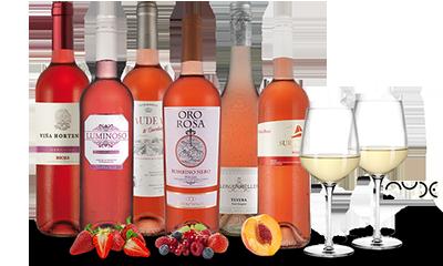 Ebrosia Rosé-Paket
