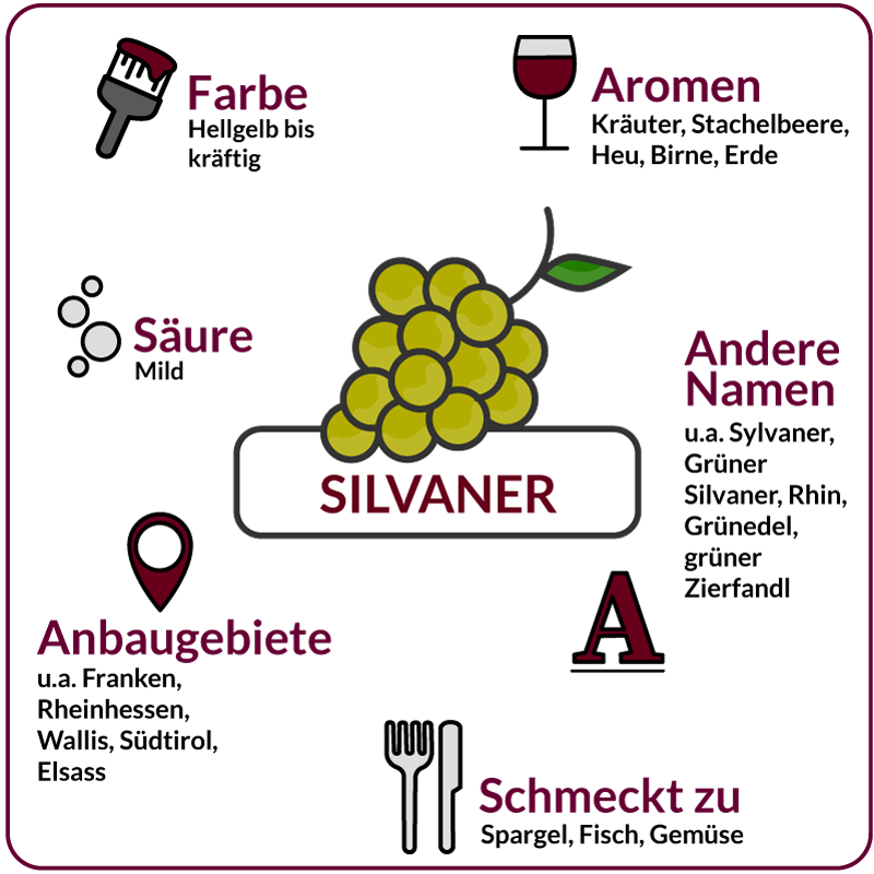 Farbe, Aromen, Säure, Anbaugebiete Rebsorte Silvaner