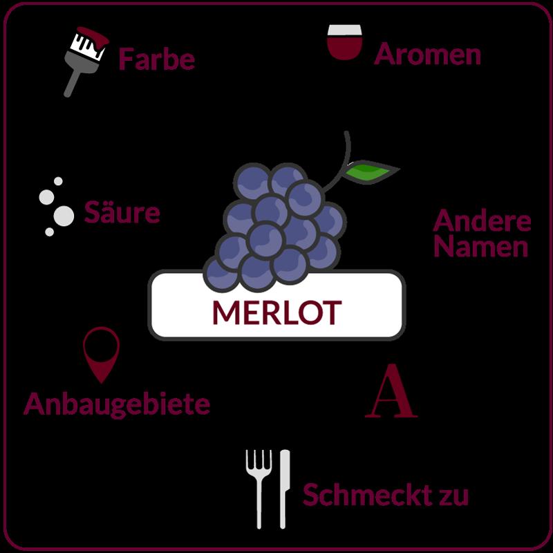 Farbe, Aromen, Säure, Anbaugebiete Rebsorte Merlot