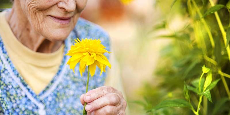 Seniorin hält eine Blume in der Hand