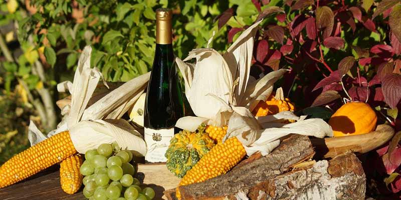 Weingenuss im Herbst