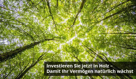 Nachhaltigkeit – Wachstum – Rendite